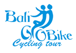 Bali Bike Tours and Eco Cycling in Ubud with Bali Go Bike